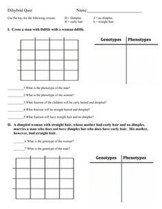 Monohybrid Cross Worksheet Practice Problems
