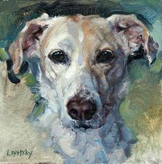 Custom Petrait dog art oil painting on canvas.  Alla Prima pet portrait by Heather Lenefsky Art.