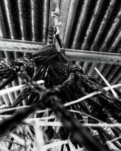 Siete días siete fotos en blanco y negro de tu vida diaria. 7 of 7.  Por invitación de mi amada @dscndientdkain  #flickr #monochrome #bnw #net #lines #hanging