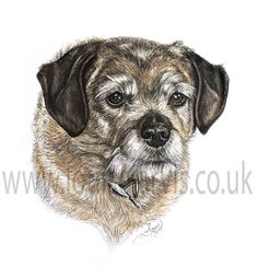 """Artwork for my recent book- """"The World of Dogs - An artist's Perspective"""" by Louise Jarvis Art www.louisejarvis.co.uk"""