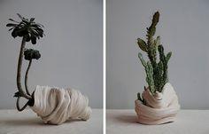 Zhu Ohmu's Coiled Ceramics