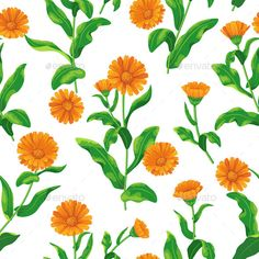 Seamless pattern with bunches of orange calendula flowers on white.  Zip archive containseditable eps10 and high resolution jpg.