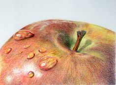 David Richards of the UK Colored Pencils Society