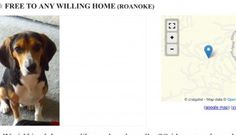 This Man's Girlfriend Wanted Him to Get Rid of His Dog on Craiglist ... Here's the Ad He Put Up