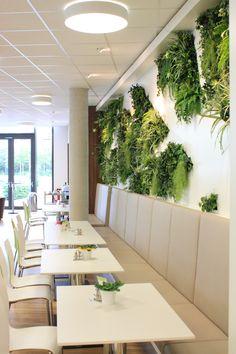 Moos rund ideas casa pinterest moos runde und wartezimmer - Vertikale wandbepflanzung ...