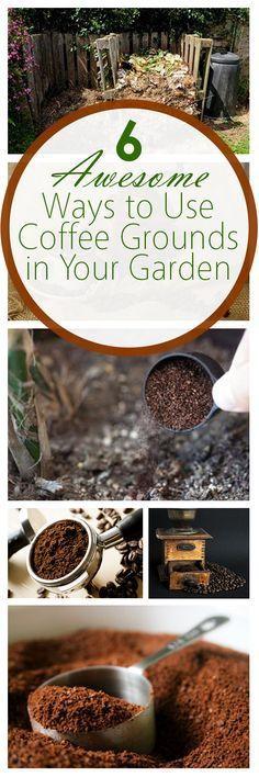 Garden with coffee grounds, natural gardening, gardening hacks, popular pin, garden tips and tricks, outdoor living, natural pest control.