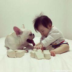 レノザウルス♥️  #frenchbulldog #frenchie #dog #daughter #babygirl #フレンチブルドッグ #女の子