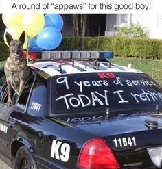 Funny Animal Pictures Of The Day 25 Pics I thank you from the bottom of my heart for you're service.Relax have fun n enjoy life to the maximum.I salute you. Animals And Pets, Baby Animals, Funny Animals, Cute Animals, Animal Funnies, Animal Memes, Cute Puppies, Cute Dogs, Dogs And Puppies