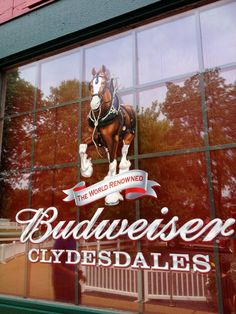 It's All About Ty and Ashlee: Grant's Farm, St. Louis - home of the Budweiser Clydesdale horses