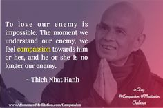 Thich Nhat Hanh, Social Work, Our Love, Compassion, Google Images, Wise Words, Poems, Meditation, Challenges