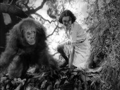 Tarzan the Ape Man 1932   Tarzan, l'uomo scimmia - Tarzan the Ape Man (1932) - CIAKHOLLYWOOD