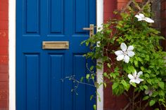 Escape the pitfalls of an unsightly exterior by avoiding these eight common mistakes that can sabotage curb appeal.