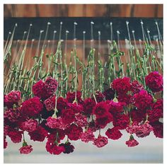 Upside down flower arrangement. Perfect for an edgy-whimsical wedding
