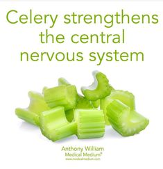 Celery strengthens the nervous system ~ medical medium # dietary supplement - Health Medical Health Facts, Health And Nutrition, Health And Wellness, Health Fitness, Women's Health, Healthy Tips, How To Stay Healthy, Healthy Eating, Medical Medium Anthony William