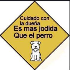 """Música para el post. 17 Carteles de """"Cuidado con el perro"""" que te harán reír por su gran ingenio. Una manera efectiva de proteger tu hogar es por medio de un perro como mascotea y vigía cuando no estes. Además, con un letrero podrías advertir..."""