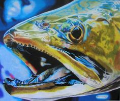 Vibe Brook Trout, colored pencil artwork by Travis J. Sylvester