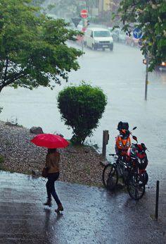 Rain by Ritvars Kalnkambers on Walking In The Rain, Singing In The Rain, I Love Rain, Rain Days, Umbrella Art, Sound Of Rain, Rain Storm, Going To Rain, Rainy Night