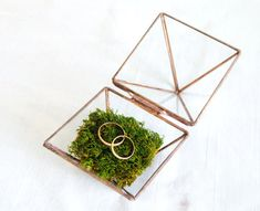 For the perfect ring shot, make sure you have an awesome ring box! We love this glass geometric ring box filled with moss. Woodland Theme Wedding, Forest Wedding, Holiday Gift Guide, Holiday Gifts, Wedding Crafts, Wedding Decorations, Jewellry Box, Wedding Ring Box, Ring Pillow