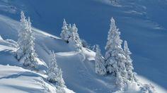 4 Phasen einer Beziehung - 4. Phase #Winter #Auflösungsphase: http://www.beziehungsratgeber.net/beziehungstipps/4-phasen-einer-beziehung-tipps/