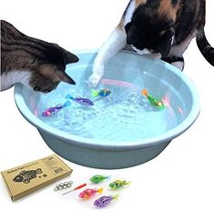 Indoor Cat Interactive Swimming Fish Toy- Best Water Cat Toy for Indoor Cats, Play Fishing, Good Exercise Activity, Drink More Water, led Light, Battery Included (Swimming Bowl/Pool is not Included) COLORFUL 4 PIECE SET– This set of cat toys comes with 4 uniquely colored swimming robot fish toys that your cat is sure to enjoy playing with and catching. The included colors may vary. 8 extra LR44 batteries and 1 installation tool also included. STIMULATE YOUR CAT'S INSTINCTS – These interactive ca Cat Window Hammock, Cat Window Perch, Litter Robot, Exercise Activities, Water Activities, Interactive Cat Toys, Cat Shelves, Fish Cat Toy, Dog Toys