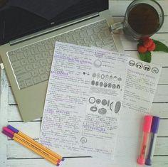 https://www.instagram.com/eulenfeather/ #bio #study