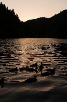 Sunset at Red Lake