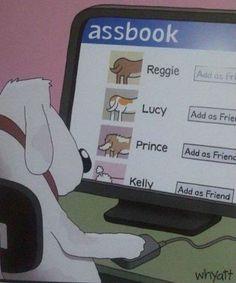 """""""Facebook"""" for Dogs now online! Das """"Facebook"""" für Hunde ist da! ;-)"""