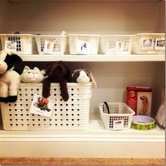 I like that bigger basket to store the stuffed animals in. Preschool Centers, Preschool At Home, Preschool Science, Preschool Classroom, Classroom Themes, Dramatic Play Themes, Dramatic Play Area, Dramatic Play Centers, Play Based Learning