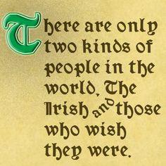 Wish you were Irish, ha! Well, I'm Scottish-Irish. Celtic Pride, Irish Pride, Irish Celtic, Irish Quotes, Irish Sayings, Irish Proverbs, Two Kinds Of People, Irish American, American Women