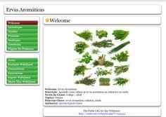 Antónia Espírito Santo (Webquest/Zunal Ervas Aromáticas) http://zunal.com/webquest.php?w=245344
