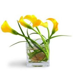 yellow callas in an unstructured arrangement with bear grass and stones