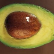 How to Grow an Avocado Plant From Seed | eHow