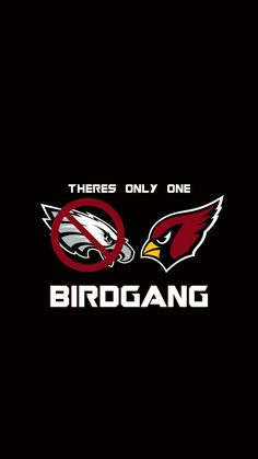 51 Best MY ARIZONA CARDINALS images in 2013 | Az cards, Football  for cheap