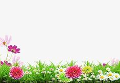Spring background poster, Spring, Flower, Grass PNG and PSD Red Background Images, Flower Background Wallpaper, Blue Sky Background, Flower Backgrounds, Spring Backgrounds, Best Nature Wallpapers, Hd Cute Wallpapers, Beautiful Nature Wallpaper, Fundo Hd Wallpaper