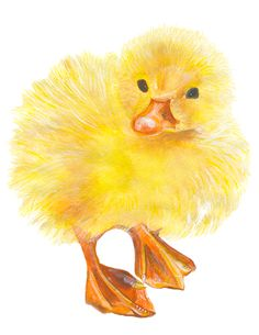 baby ducky watercolor