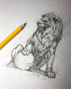 #lion #guardian #foodog #pencil #hb #paper #sketch ✏️