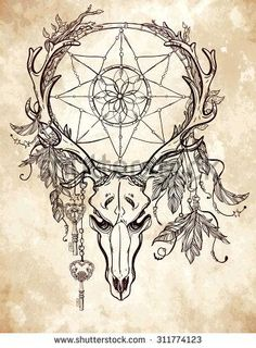Beautiful scull tattoo art Vintage deer, bull, elk, horns Antlers with branches and ornate dream catcher with stars, lock, feathers Hand drawn outline work Vector illustration Isolated
