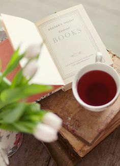 A warm tea and a book!!  :) Aline♥
