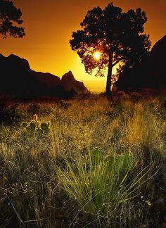 Chisos Basin Sunset, Big Bend National Park by anindya c, via Flickr