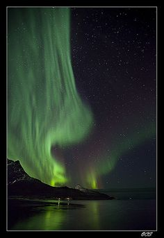 Definitely on my bucket list.. #AuroraLights  ✯ Grøtfjord, Norway