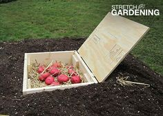 Build a Mini Root Cellar | Garden Club  I am going to use this one.