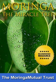 Amazing Moringa eBook available at http://www.moringamutual.org absolutely FREE!