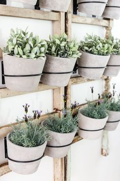 60 The Best Modern Farmhouse Essentials From Ikea Decor, Classic Decor, Rustic House, Ikea Decor, Rustic Diy, Plant Wall, Wall Planter, Decorating On A Budget, Best Ikea