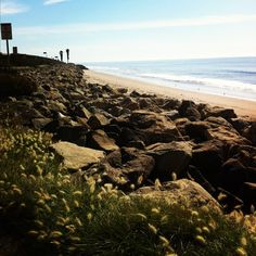 The Beach in Carpenteria, CA #californiadreaming Surfer Boys, Ocean Sunset, California Dreamin', Skater Girls, Johnny Was, Us Travel, Palm Trees, Sunshine, Vacation