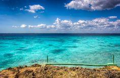 Punta Perdiz near Playa Larga, Cuba
