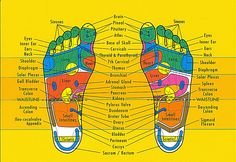 """Reflexology, of Robinson's """"The Foot and the Leg"""""""