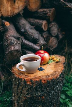 Autumn Still Life with hot tea, apple and dog-rose by Katerina Sednyeva on Tea Cafe, Coffee Cafe, Good Morning Coffee, Coffee Break, Autumn Tea, Winter Coffee, Tea And Books, Coffee Photography, Fun Cup