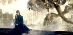 A aventura de Newt Scamander, reintroduzindo o universo bruxo de J.K. Rowling aos cinemas, estreou na última semana com uma enxurrada de elogios. Já pensando na sequência do filme, o diretor David Yates contou, em uma nova entrevista, que o próximo passo da trama será um pouco diferente e mais obscuro. Com os roteiros escritos …