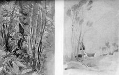 Studies in Tree Growth by John Ruskin