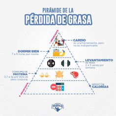 Health and nutrition - Cómo Perder Grasa Abdominal con 6 Simples Reglas FullMusculo – Health and nutrition Weight Training Workouts, Gym Workouts, Fitness Nutrition, Fitness Tips, Cardio, Fitness Motivation, Weight Loss Video, Gym Food, Abdominal Fat